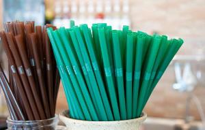 Минприроды предлагает запретить использование 28 одноразовых товаров вРоссии