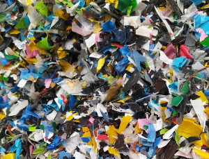 ВРоссии осваивают переработку цветных ПЭТ-подложек