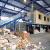 Московская область: строительство мусороперерабатывающего завода в Балашихе откладывается