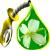 Прибалтика: использованное масло для жарки в McDonald's поступает на переработку в биодизель