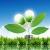 Европейский рынок «зеленой» энергетики сдает позиции Азии иЛатинской Америке