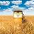 Зерно как альтернатива нефти