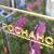Индийские инвесторы могут создать совместный фонд с«Роснано»