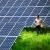 ВБелгородской области могут построить солнечную электростанцию