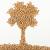 ВАлтайском крае увеличиваются объемы безотходной переработки древесины