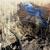 ВВолгограде 13 ассенизаторов незаконно сливали жидкие бытовые отходы