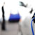 ВПетербурге вТРЦ «Питерлэнд» появи-лась станция зарядки электромобилей