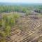 «Кузбассразрезуголь» приступил квосстановлению лесного фонда Кузбасса