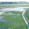 Стоки сполей, животноводческих комплексов ипромышленных площадок становятся главным фактором деградации водных объектов
